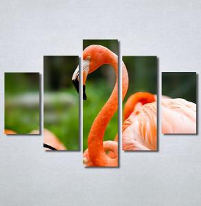 Slike na platnu Flamingo ptica Nina30256_5