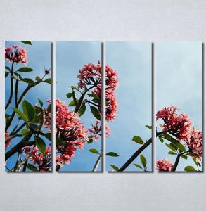 Slike na platnu Flower Nina30175_4