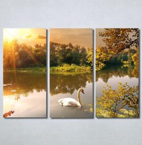 Slike na platnu Labud na jezeru Nina30286_3
