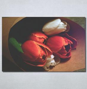 Slike na platnu Lale Nina30189_P