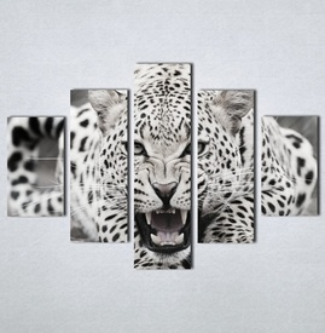 Slike na platnu Leopard Nina123_5