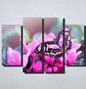 Slike na platnu Leptir Nina160_4