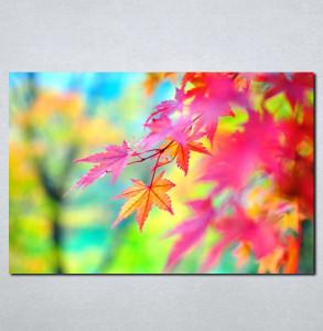 Slike na platnu Ličće u boji Nina061_P