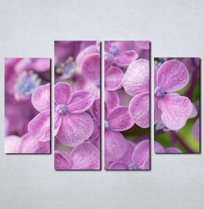 Slike na platnu Ljubicasto cvece Nina081_4