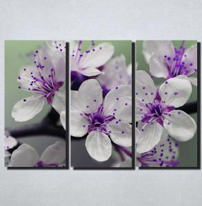 Slike na platnu  Ljubicasto cvece Nina166_3