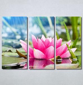 Slike na platnu Lokvanj Nina30373_3