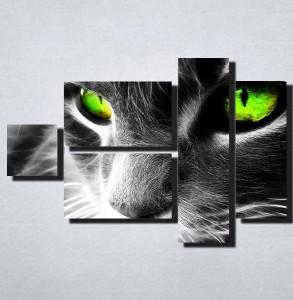 Slike na platnu Macka sa zelenim ocima Nina167_5