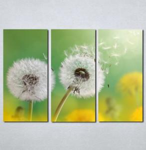 Slike na platnu Maslacak Nina004_3