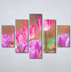 Slike na platnu Pink lale Nina30270_5