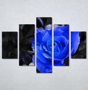 Slike na platnu Plava ruza Nina127_5