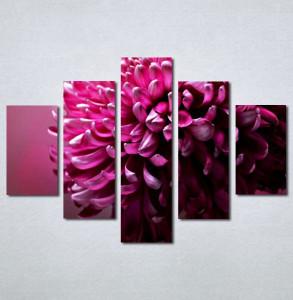 Slike na platnu  rozi cvet_Nina131_5