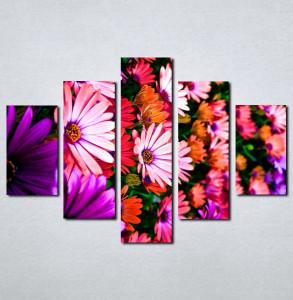 Slike na platnu Šareno cveće Nina056_5