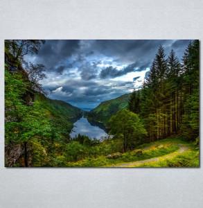 Slike na platnu Šuma i reka Nina30118_P