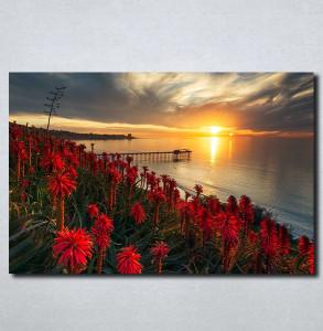 Slike na platnu Zalazak sunca i crveni cvet Nina179_P
