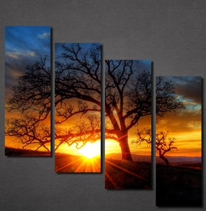 Slike na platnu Zalazak sunca i drvo Nina30123_4
