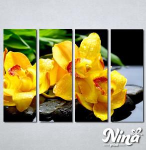 Slike na platnu Žuta orhideja Nina252_4