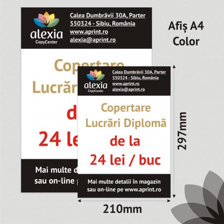 Afis A4 Color