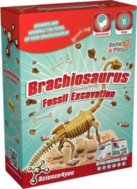 Set paleontologie - Brachiosaurus