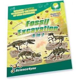 Set paleontologie - 4 in 1