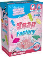 Laboratorul de sapunuri - mini