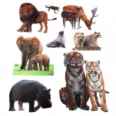 Set Sticker 8D pentru copii, Animale, decor camera, ST-HK805, Multicolor