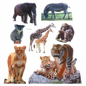 Set Sticker 8D pentru copii, Animale, decor camera, ST-HK806, Multicolor