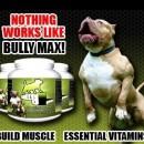 Протеини за кучета Bully Max 60 таблетки