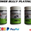 Протеин POWER BULLY 98% Platinum 500гр.