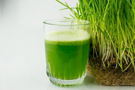 Poze Grau spelta pentru iarba de grau bio pentru suc 1kg