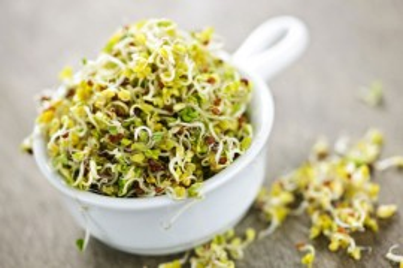 Poze Mix seminte pentru germinare in 3 zile bio Essential 250g