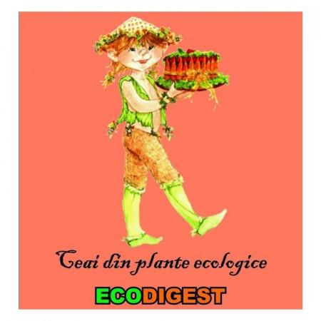 Poze Ceai din plante ecologice pentru digestie Ecodigest 150g