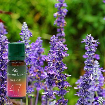 Ulei parfumat Salvie, Aroma Land, 10 ml