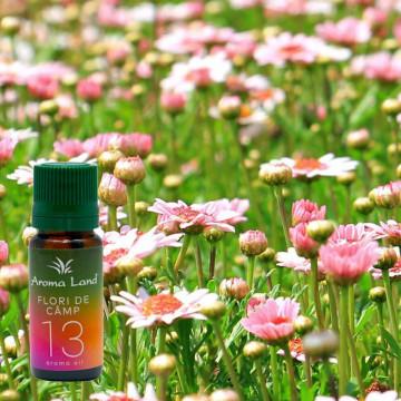 Ulei parfumat Flori de Camp, Aroma Land, 10 ml