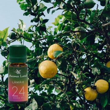 Pachet 7 uleiuri aromaterapie Fruits Delight, Aroma Land, 10 ml