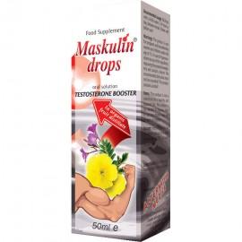 MASKULIN KAPI