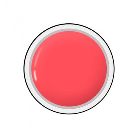 Gel colorat unghii Royal Femme CRUSTY RED (Geluri Profesionale Unghii)