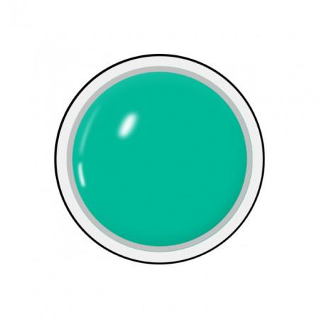 Gel colorat unghii Royal Femme MINT GREEN (Geluri Profesionale Unghii)
