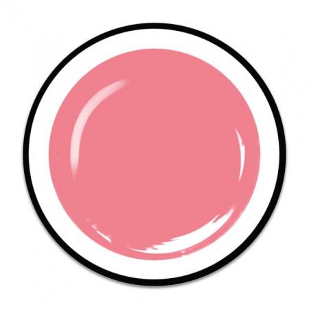 Gel colorat unghii Royal Femme DREAM PINK (Geluri Profesionale Unghii)