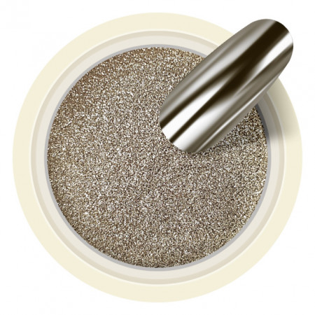 Pigmenti Unghii Mirror Culoare Argintiu Cod PM20
