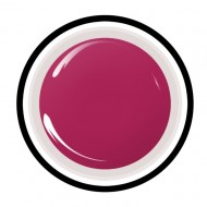 Geluri Colorate Anna Nails 308 - Gel Color UV Unghii