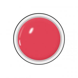Gel colorat unghii Royal Femme STRAWBERRY SHERBET (Geluri Profesionale Unghii)