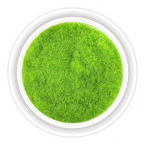 Catifea Unghii Decorativa Culoare Verde Brotacel, Cod C-V26