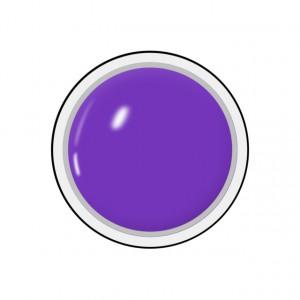Geluri Color Unghii, Producator Royal Femme, Culoare Purple Love, Gramaj 5ml, Geluri Colorate Manichiura