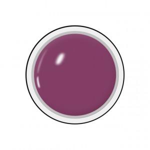 Geluri Color Unghii, Producator Royal Femme, Culoare Blackberry Juice, Gramaj 5ml, Geluri Colorate Manichiura