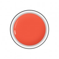 Gel colorat unghii Royal Femme SMOKED CORAL (Geluri Profesionale Unghii)