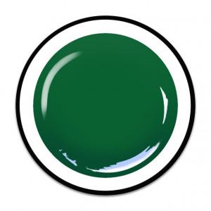 Gel colorat unghii Royal Femme LEAF GREEN (Geluri Profesionale Unghii)