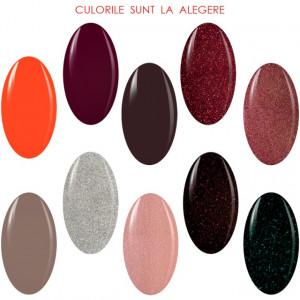 Kit Geluri Color Exclusive Premium Line, 10 Culori la Alegere