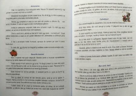 Ortografia și punctuația la clasele primare și gimnaziale editura Ars libri