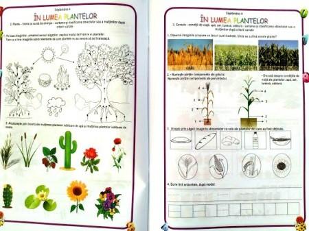 Matematica și explorarea mediului, Clasa pregătitoare - Caiet de lucru