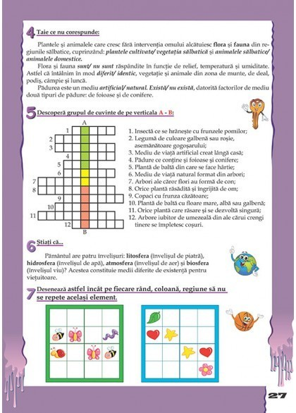 CAIET PENTRU VACANTA - CLASA a IV-a